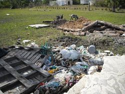 PHOTO PROVIDED BY THE CHARLOTTE COUNTY ANIMAL CONTROL The Charlotte County Animal Control found 85 to 90 animals living in deplorable conditions at a farm on Oil Well Road in Punta Gorda April 23.