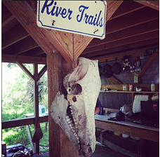 he bunk house was appropriatly decorated with a hog skull Photo: Merab-Michal Favorite